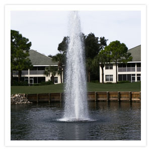 Lake Water Fountain Design And Installation