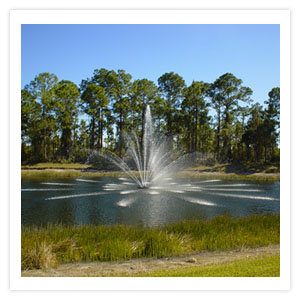Collier water systems lake fountains irrigation pump for Electric motor repair fort myers